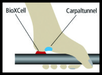 bioxcell2